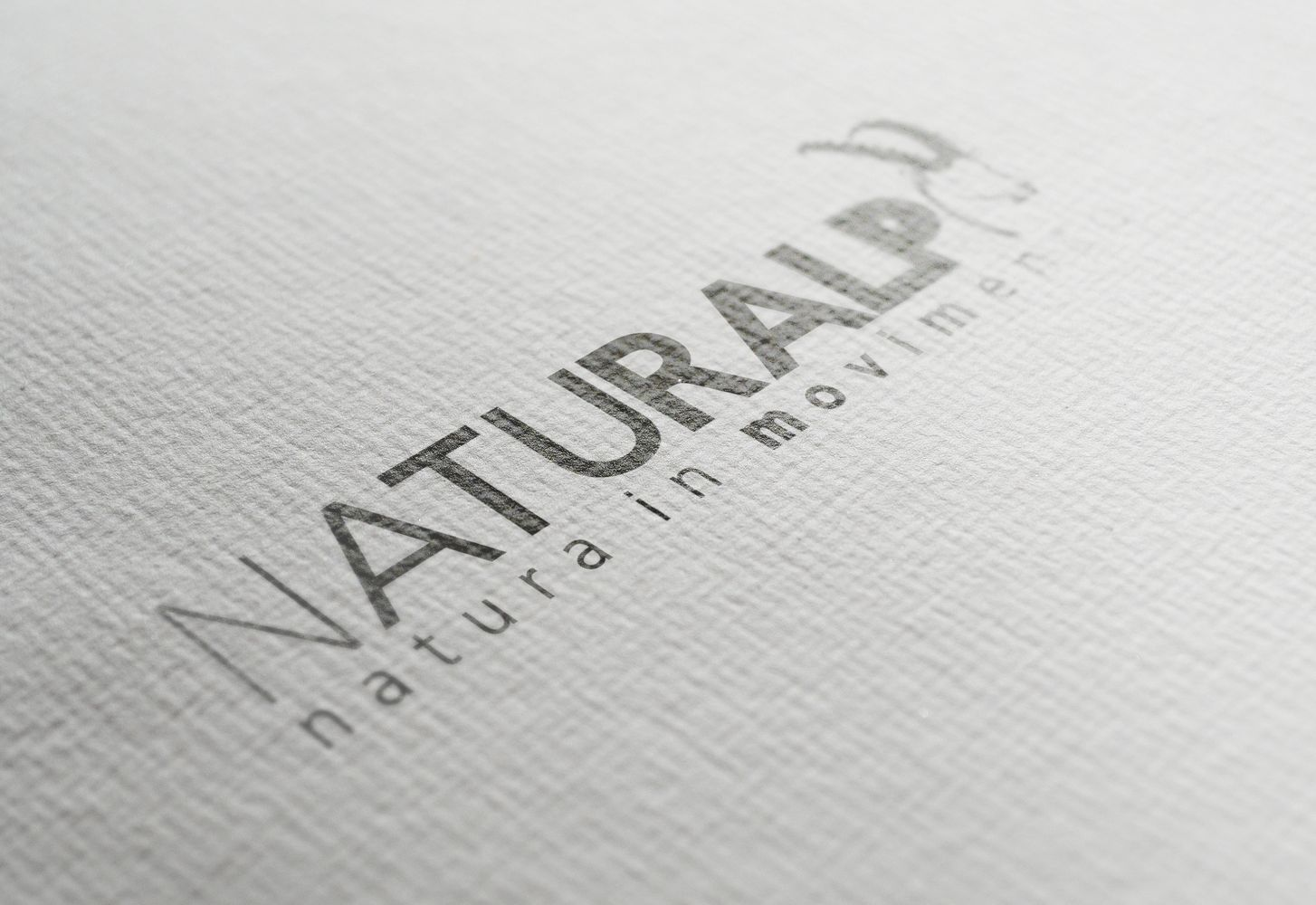 BSide_Portfolio_Naturalp_Logo